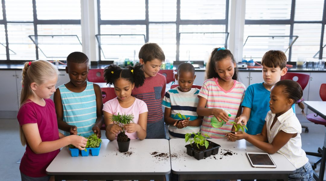 Indoor Growers World - Learn - Classes, Resource Library, Growers Tools